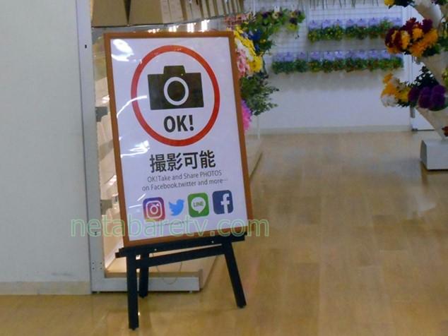 ダイソーの店内に掲げられていた大きな「撮影可能」の看板